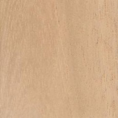 "SPANISH CEDAR SHEETS 4' x 8' x 3/4"" for Wall & Ceilings in WALK-IN Humidor - Plywood (3/4"")"